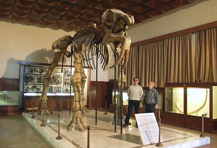 paleontologicen
